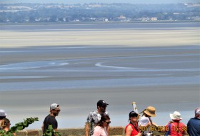 Vous pouvez, avec l'accompagnement d'un guide, faire la visite de la baie.